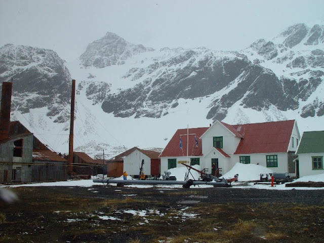 Фолклендская война 1982 - Грютвикен