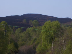 Day 9: 29th April 2011, Moorland Fire - Meall Gorm