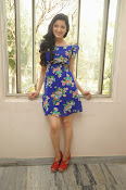 Richa Panai Latest Glam pics in Blue-thumbnail-6