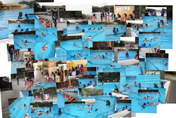 DOLPHIN SWIMMING ACADEMY will continue promoting a 'New' approach in