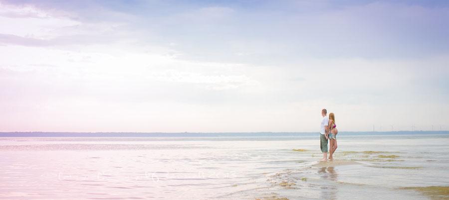 panoraam-meri-beebiootus