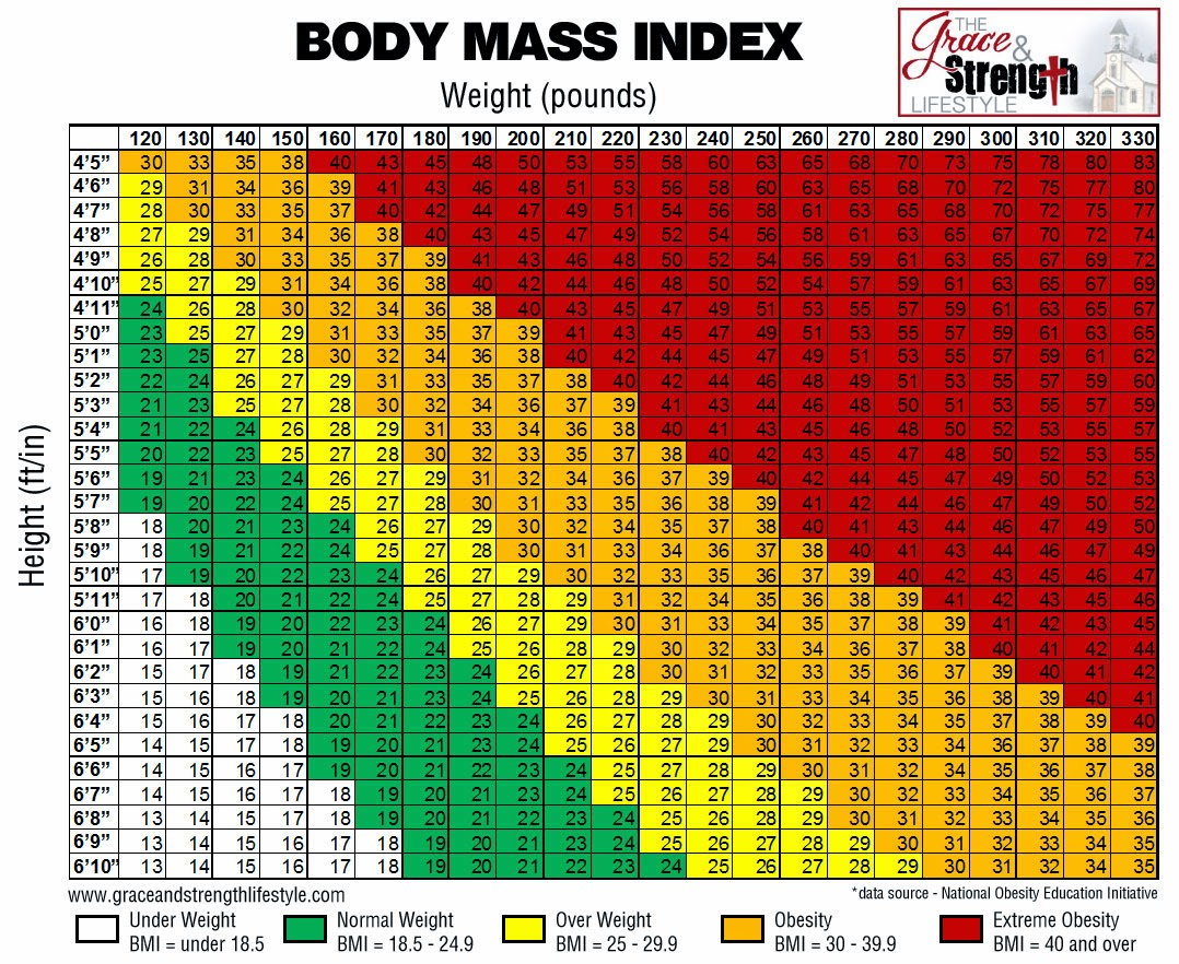 Bmi Body Mass Index Template Calculator