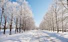 Зима за окном.