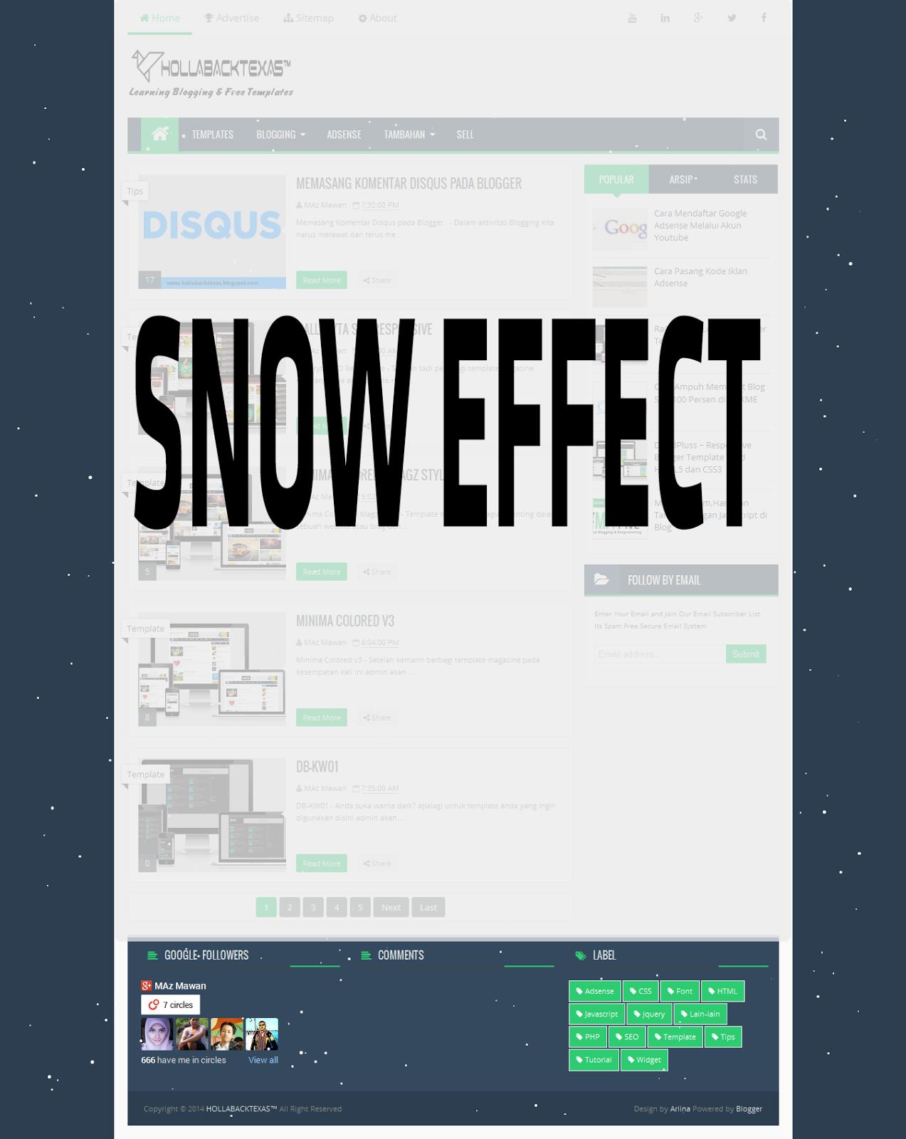 snoweffect