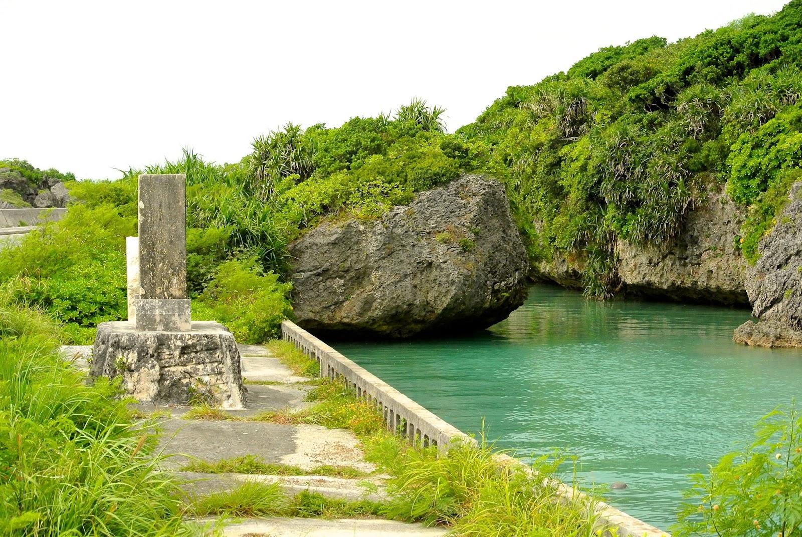 NAMA WASAVI: Okinawa,Japan 009