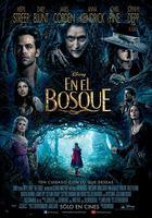 En el Bosque (2014) DVDRip Latino