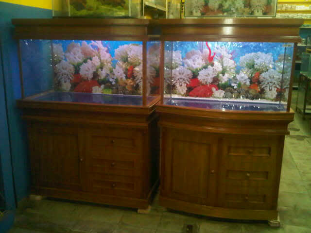 jual Aquarium murah
