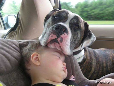 Kids And Pets Cutest Funny Pictures
