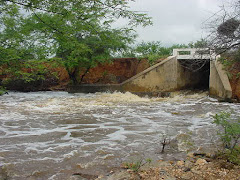 Riacho em período de chuvas
