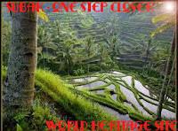 SUBAK - Selangkah Menuju Warisan Dunia UNESCO | Subak Sistem Irigasi Terbaik