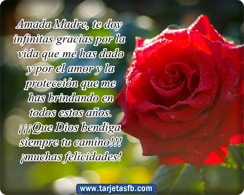 Carta de una madre al Santo Padre, por Andreína Muñoz-Tebar