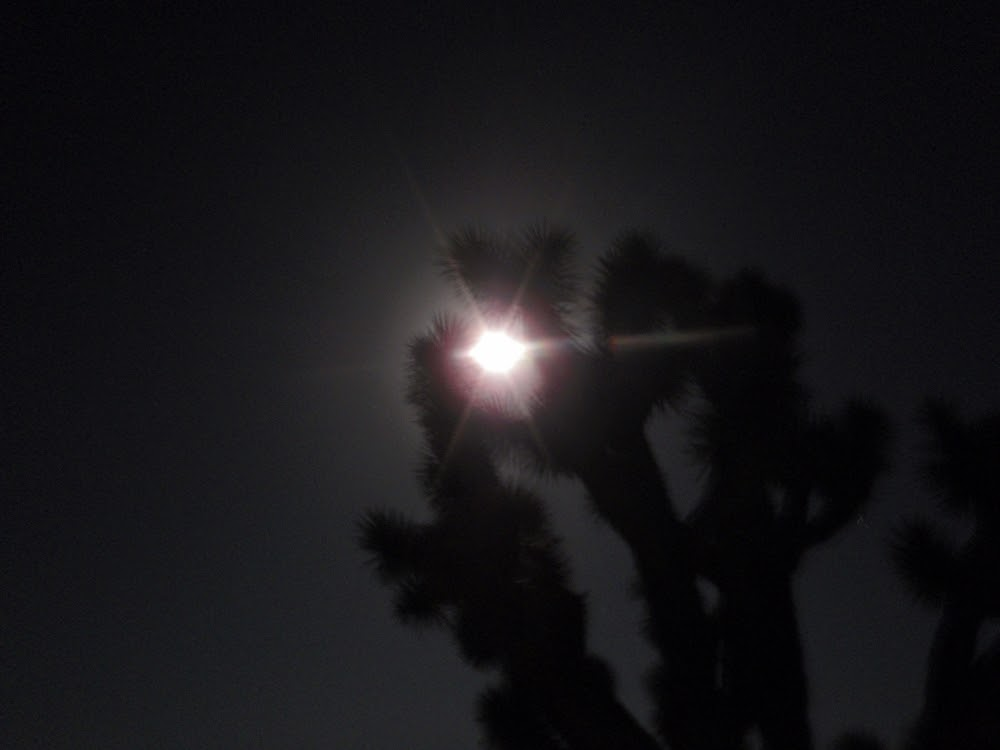 Moonlight in White Hills, AZ - hiking to Searchlight, NV, July 2012