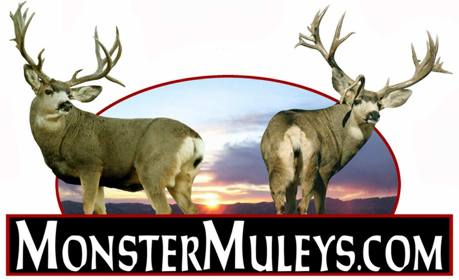 Newest Sponsor - Monster Muleys