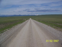 McCown&#39;s Longspur Habitat