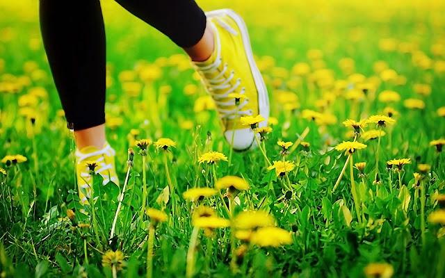 Caminando entre las Flores Amarillas de Primavera Paisajes Naturales