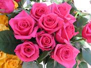 CONCURSO DE ROSAS HECHAS A MANO. Antonio R. usuario del club social portalet . rosas mas hermosas