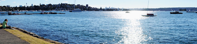 Panoramic photo of Rose Bay
