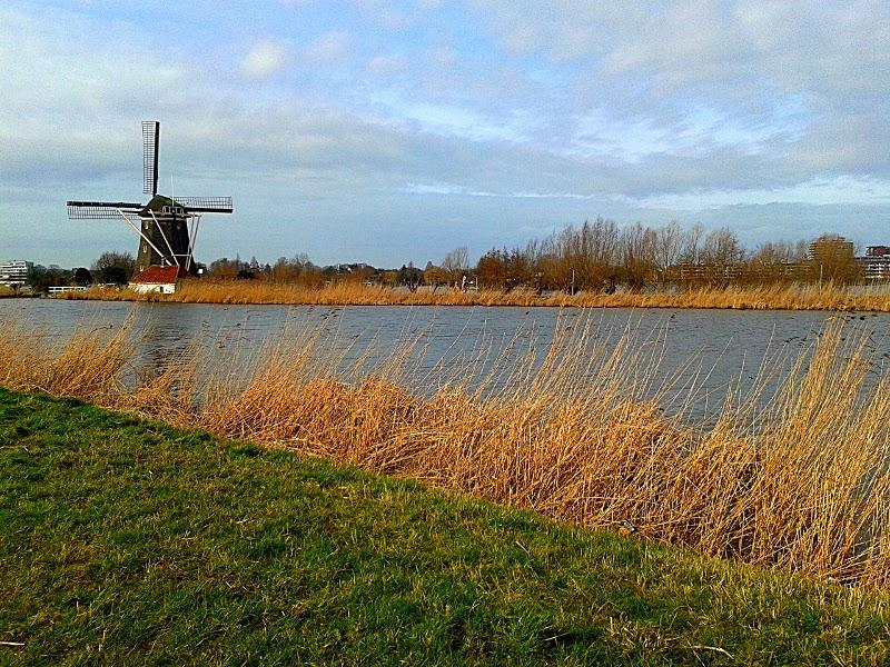 Rotterdam - Prinsmolen