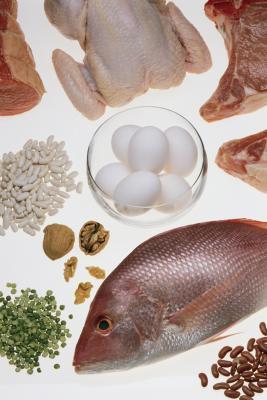 Bio geo nerd brain food nutrition for learning amp memory