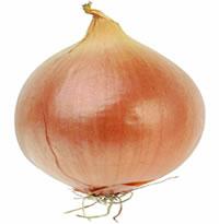 Imagenes de cebolla