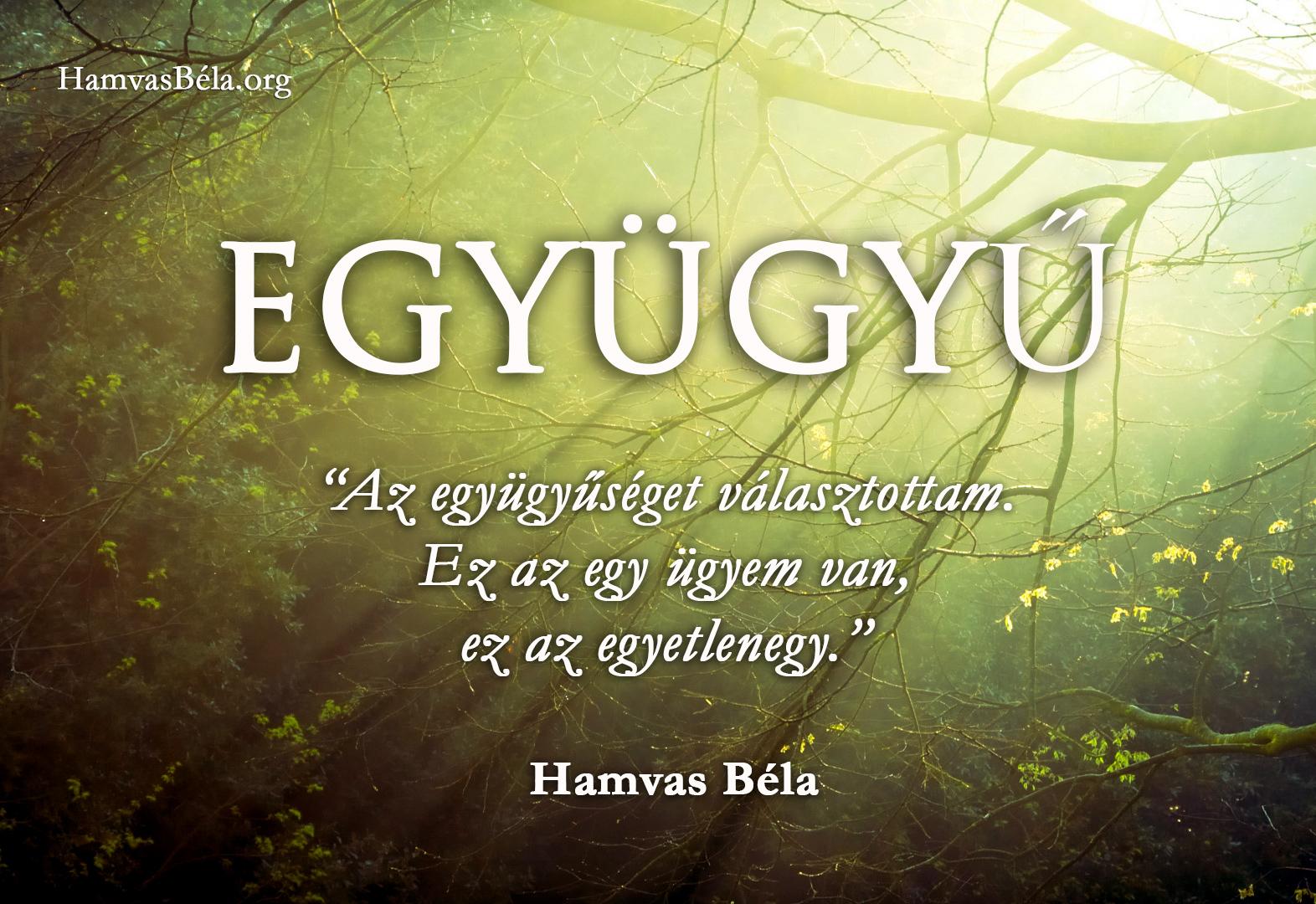 Hamvas Béla, idézet, háttérkép,
