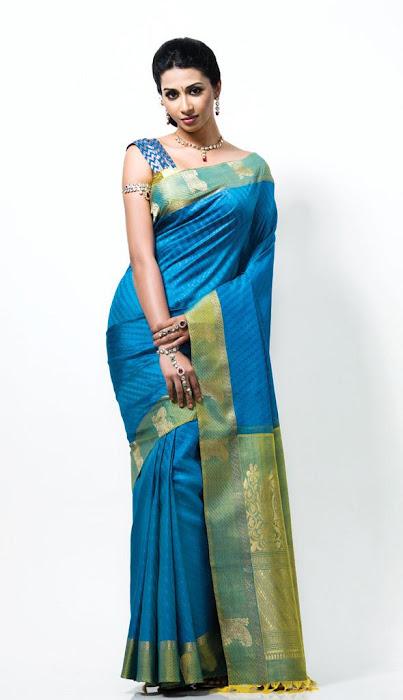 gayathiri wonderful saree ad collections 2012 photo gallery