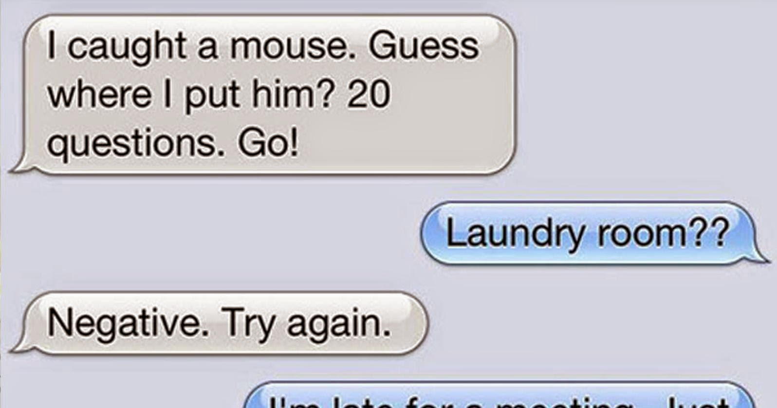 15 Text Messages A Cat Would Send If Cats Could Actually Text