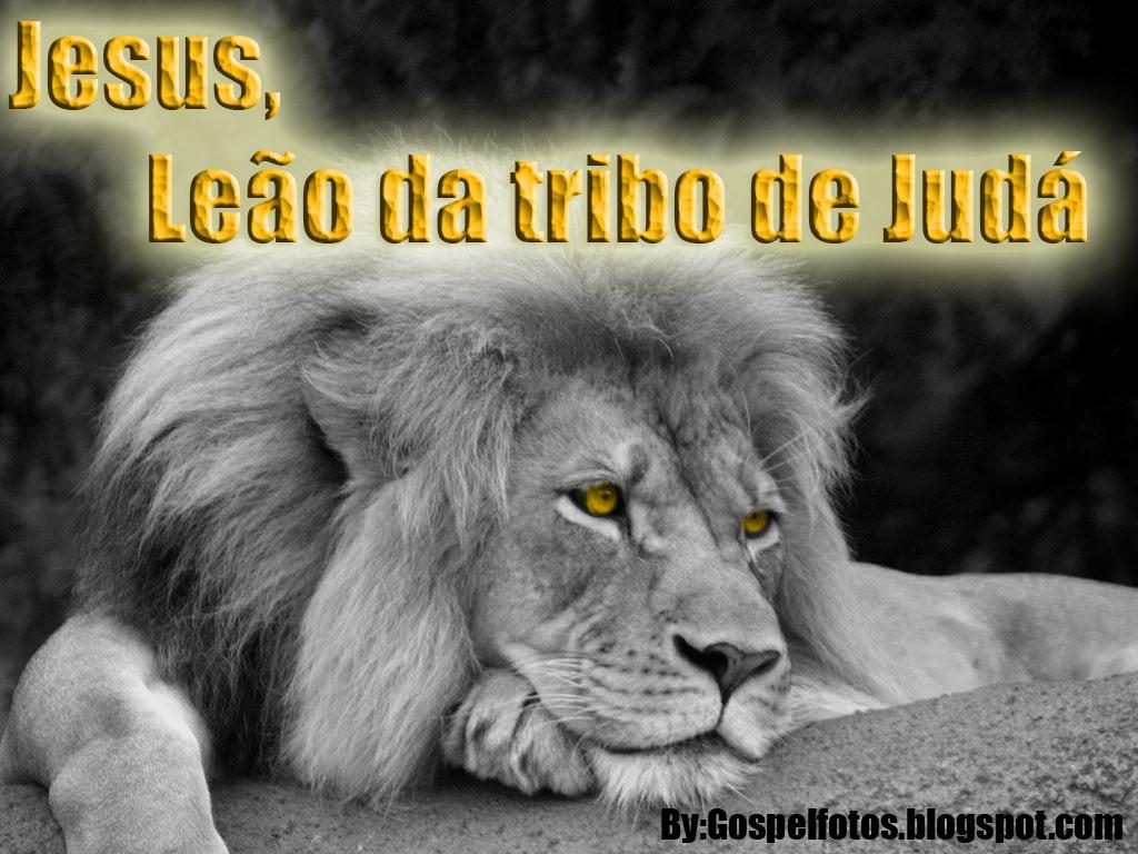Jesus O Le  O Da Tribo De Jud