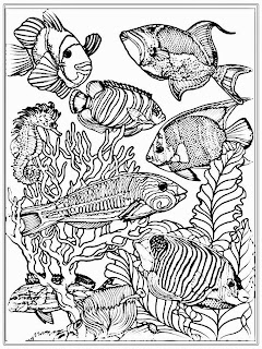 Aquarium Fish Adult Coloring Pages