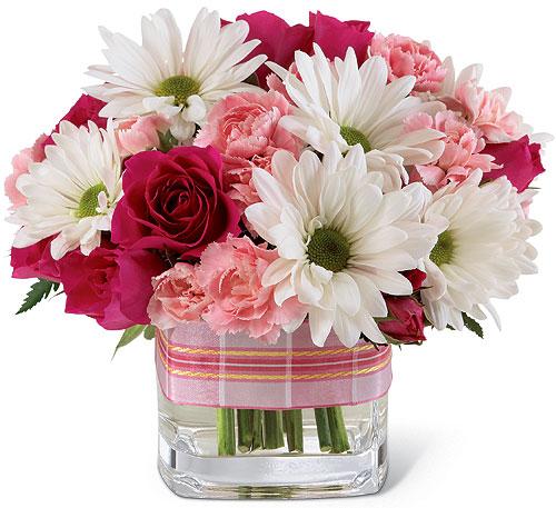 Hình ảnh hoa độc đáo