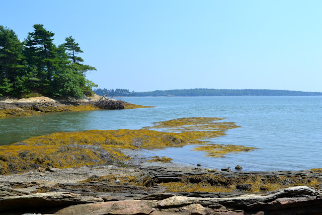 Freeport, Maine Coastline