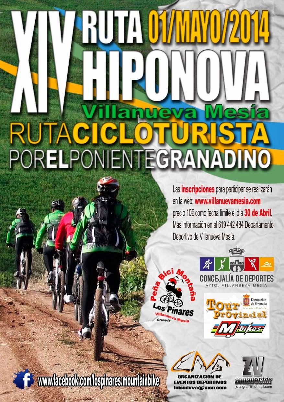 www.villanuevamesia.com