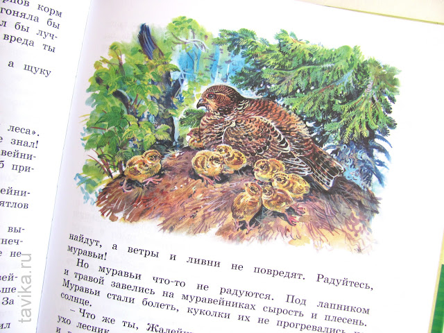 Что почитать ребенку в 7 лет о природе