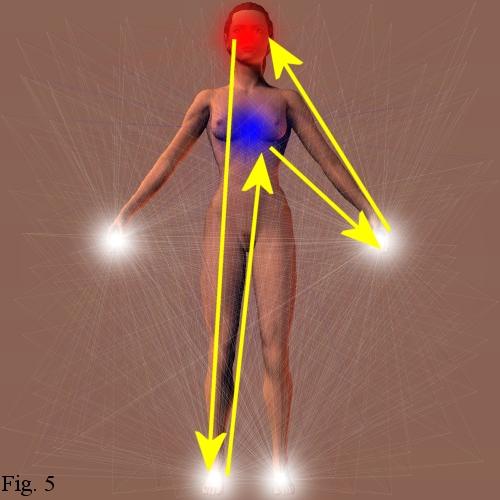 Teoria de los puntos de presión: El Chi en el Cuerpo Humano