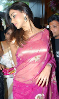 Genelia DSouza in Beautiful Pink Saree Pictures