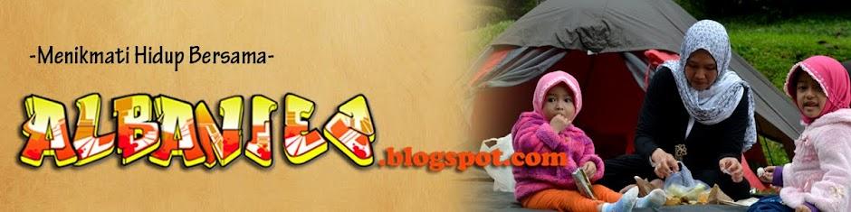 albaniez.blogspot.com