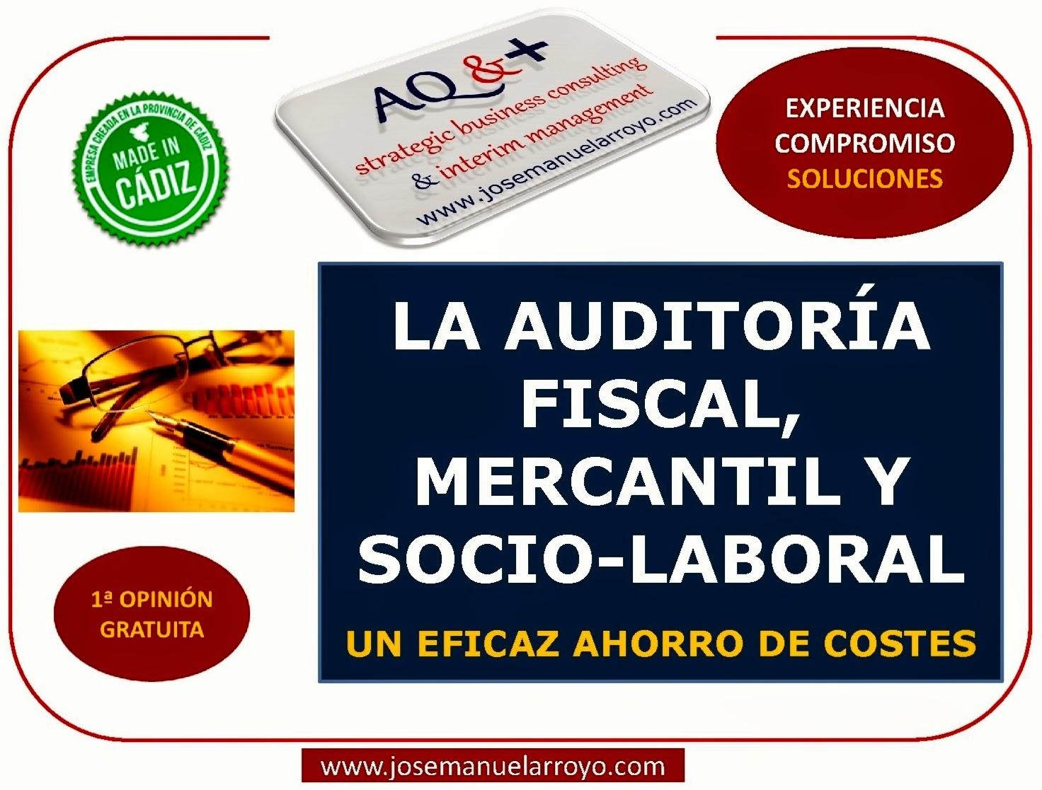 Auditoria Fiscal, Mercantil y Socio-Laboral