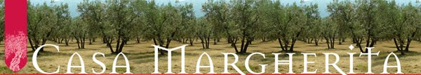 Life on an Italian olive grove