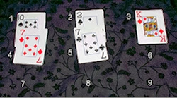The Nine- or 21-Card Trick