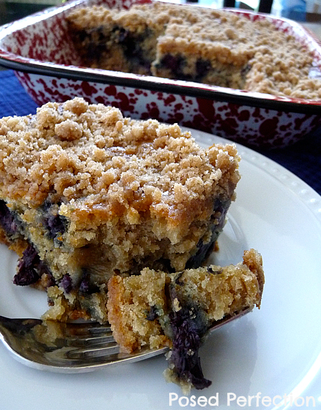 Posed Perfection: Blueberry Oatmeal Coffee Cake