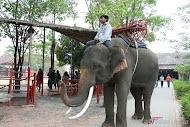 คนเลี้ยงช้างตอนที่ 3