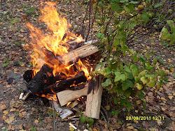 Puutarhapalvelumme käyttää kaikkia elementtejä puutarhapalveluissaan