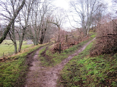 Walkers on Deeside should take the right fork in the path to Bridge of Gairn