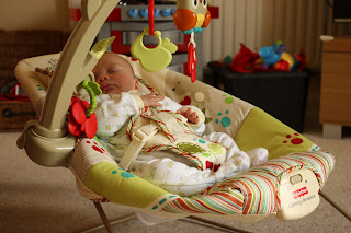 Fisher-Price woodsy vibrating bouncer