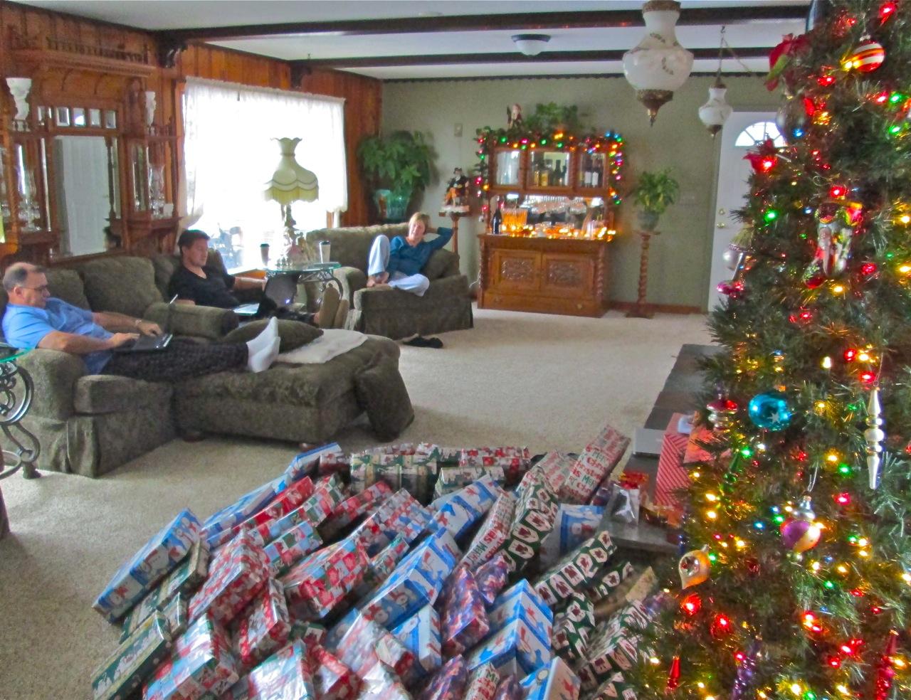 Bill's TN Paradise: Christmas in snowy NY - 2012