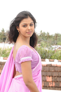 Monal Gajjar wearing Spicy Thin Pink Saree and Lovely Pink Blouse Spicy Pics
