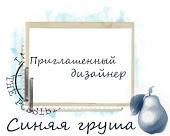 ПД в блоге Синяя Груша