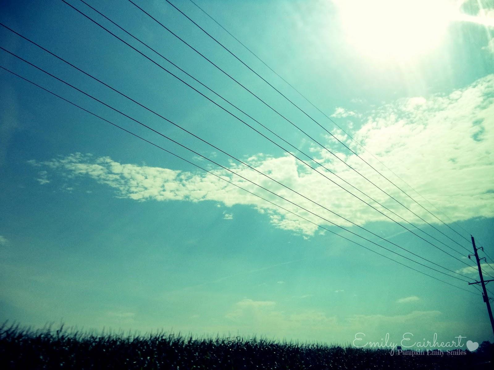 Clouds above a corn field.