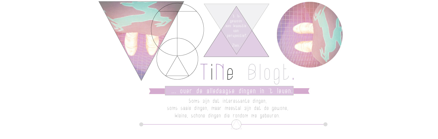 △▽ TiNE ▽△  blogt