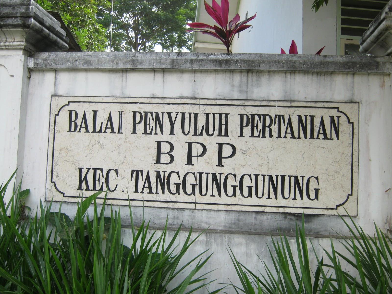BPP Tanggunggunung tulungagung,